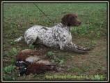 Охотничий сезон 2013